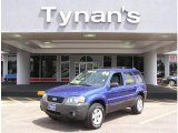 2006 Sonic Blue Metallic Ford Escape XLT V6 4WD #15569196