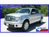 2010 Ingot Silver Metallic Ford F150 Platinum SuperCrew #15566867
