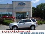 2009 Brilliant Silver Metallic Ford Escape XLT 4WD #15620544