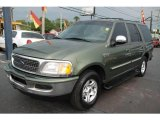 1998 Vermont Green Metallic Ford Expedition XLT #15717305