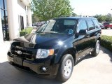 2009 Black Ford Escape Hybrid #1532920