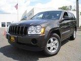 2006 Dark Khaki Pearl Jeep Grand Cherokee Laredo 4x4 #15904055