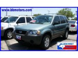 2006 Titanium Green Metallic Ford Escape XLS #15961422