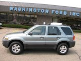 2006 Titanium Green Metallic Ford Escape XLT V6 4WD #15971205
