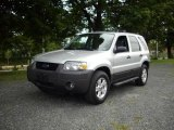 2006 Silver Metallic Ford Escape XLT V6 4WD #15968388