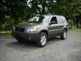 2006 Dark Shadow Grey Metallic Ford Escape XLT V6 4WD #15968396