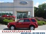 2009 Sangria Red Metallic Ford Escape XLT V6 4WD #15959646