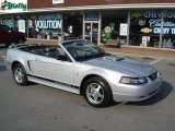 2002 Satin Silver Metallic Ford Mustang V6 Convertible #16272391