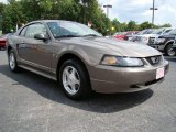 2001 Mineral Grey Metallic Ford Mustang V6 Coupe #16326737