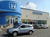 2008 Glacier Blue Metallic Honda CR-V EX-L 4WD #16324762