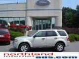 2009 Light Sage Metallic Ford Escape XLT #16443174