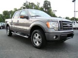 2010 Sterling Grey Metallic Ford F150 FX4 SuperCrew 4x4 #16754940