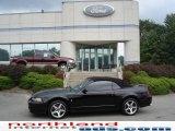 2003 Black Ford Mustang Cobra Convertible #17100642