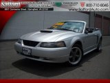 2001 Silver Metallic Ford Mustang GT Convertible #17171908