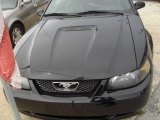 1999 Black Ford Mustang GT Convertible #17200056