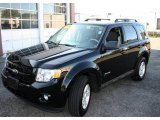 2009 Black Ford Escape Hybrid 4WD #17314755
