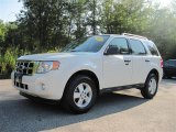 2009 White Suede Ford Escape XLT V6 #17416396