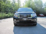 2009 Black Ford Escape XLT V6 #17416397
