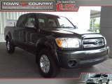 2005 Timberland Green Mica Toyota Tundra SR5 Double Cab #17746238