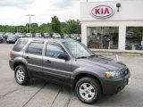 2006 Dark Shadow Grey Metallic Ford Escape XLT V6 #17744578