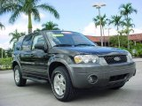 2006 Black Ford Escape XLT V6 #17736637