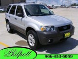 2006 Silver Metallic Ford Escape XLT #17963393