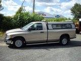 2004 Light Almond Pearl Dodge Ram 1500 ST Regular Cab #18030979