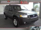 2006 Titanium Green Metallic Ford Escape XLT #18109872