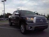 2010 Slate Gray Metallic Toyota Tundra Platinum CrewMax #18109822