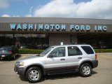 2006 Silver Metallic Ford Escape XLT V6 4WD #18231464