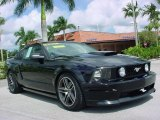 2007 Black Ford Mustang GT Premium Coupe #18224867