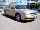 2005 Light Driftwood Metallic Chevrolet Malibu Maxx LS Wagon #18288312