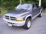 2004 Graphite Metallic Dodge Dakota SLT Quad Cab 4x4 #18304042