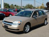2005 Light Driftwood Metallic Chevrolet Malibu Maxx LS Wagon #1826846