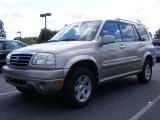 Cool Beige Metallic Suzuki Grand Vitara in 2001