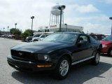 2006 Black Ford Mustang V6 Premium Coupe #18440813