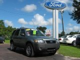 2006 Titanium Green Metallic Ford Escape XLT V6 #18440423