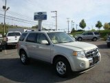 2009 Light Sage Metallic Ford Escape Limited V6 #18502282