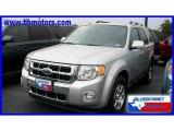 2009 Brilliant Silver Metallic Ford Escape Limited V6 #18511556