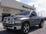 2005 Mineral Gray Metallic Dodge Ram 1500 ST Regular Cab #18631122