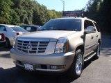 2007 Gold Mist Cadillac Escalade AWD #18644947