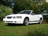 2002 Oxford White Ford Mustang V6 Convertible #18793949