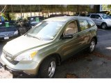 2008 Green Tea Metallic Honda CR-V LX 4WD #18783443