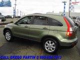2007 Green Tea Metallic Honda CR-V EX-L 4WD #18903280