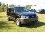 2006 Black Ford Escape XLT #18992651