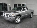 2010 Mineral Gray Metallic Dodge Dakota Big Horn Extended Cab #19069006