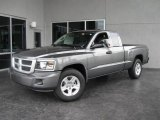 2010 Mineral Gray Metallic Dodge Dakota Big Horn Extended Cab #19068996