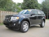 2009 Black Ford Escape XLT V6 #19086897