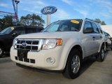 2009 White Suede Ford Escape XLT V6 #19086923