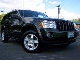 2006 Dark Khaki Pearl Jeep Grand Cherokee Laredo 4x4 #19207695